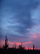 Sunset, Ironwood Forest National Monument, Arizona