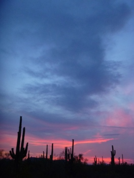 Sunset, Ironwood Forest National Monument, Arizona