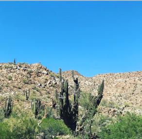 Baja California, MX